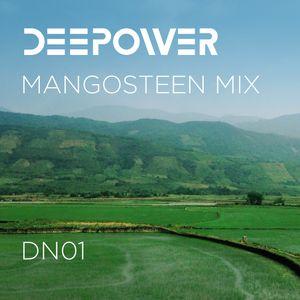 DEEPOWER Mangosteen Mix DN01