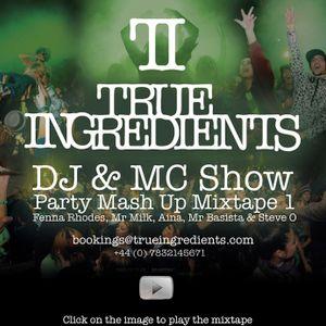 True Ingredients - Party Mash Up Mixtape Vol. 1