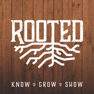 Rooted: Are you Rooted in Christ?