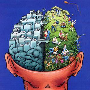 Ro-Ro's Essential Brain Massage 4