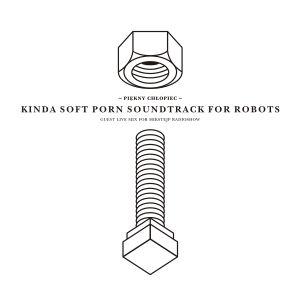 Piekny Chlopiec - Kinda Soft Porn Soundtrack For Robots (Guest Live Mix for Mikstejp Radioshow 2010)