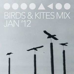 Birds & Kites Mix (Jan '12)