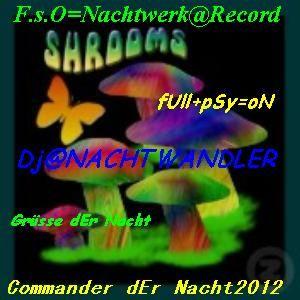 Dj-Nachtwandler-Commander der Nacht. Nachtwerk Rec. 2012
