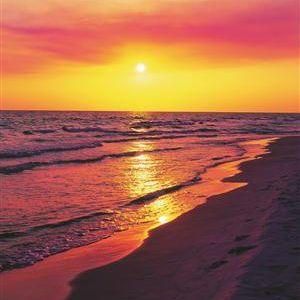 zwacki @ sunset-melody