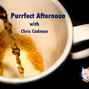 Purrfect Afternoon Wednesday 5th December