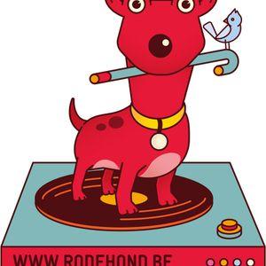Spoetnik 02/11/2016: Familiefestival Rode Hond