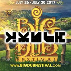 Big Dub Festival 2017 - Wubba Dubb DUB Zomby