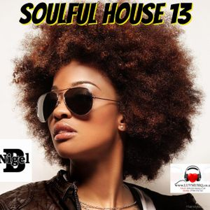 NIGEL B (SOULFUL HOUSE MIX 13)