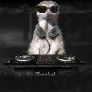 Dj Meerkat - mix2