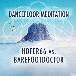HOFER66 feat. BAREFOOTDOCTOR - DANCEFLOOR MEDITATION