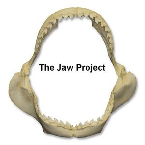 The Jaw Project - Moment of Impact - Episode 21