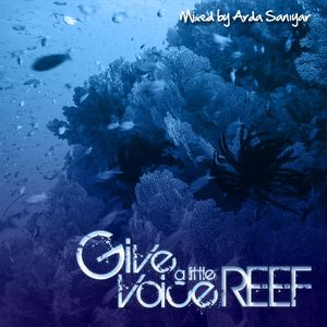 Give a Little Voice Reef