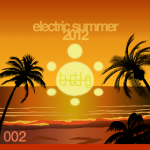 turtletheory - [002] - electric summer 2012