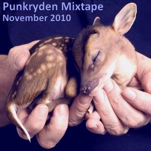 INDY Punkryden Mixtape : November 2010