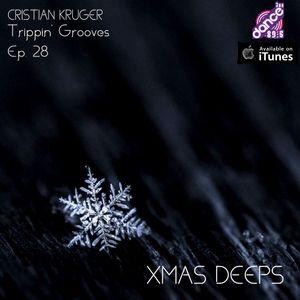 Trippin' Grooves Ep. 28 - Xmas Deeps - Live @ DanceFm Romania 21.12.2013