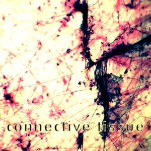 Stigae Podcast: Connective Tissue