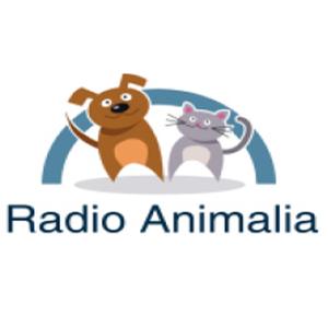 RADIO ANIMALIA # 8