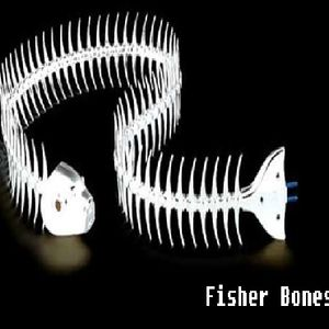Fisher-Bones