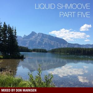 Liquid Shmoove Drum and Bass - Part Five