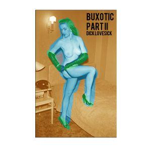 Dick Lovesick - Buxotic Mix Part II