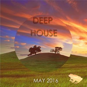 Deep house mix may 2016 by musictoad mixcloud for Deep house music 2016 datafilehost