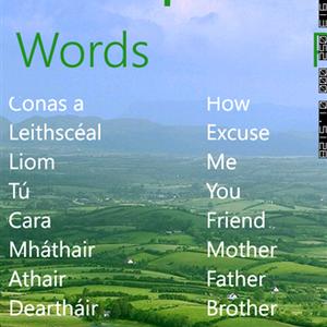 Cupla Focal Learn Irish Show 3