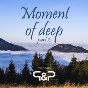 Dj P&P - Moment of deep #02