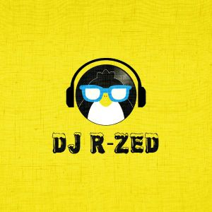 DJ R-Zed - Naughties R&B