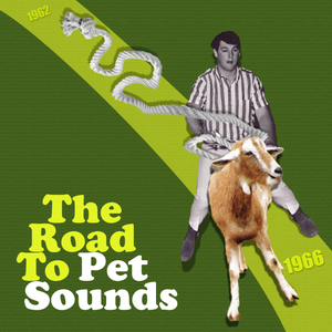 The Road to Pet Sounds