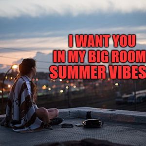 I Want You In My Big Room - Summer -Vibes - Gemini -Remix - 3,703 Followers