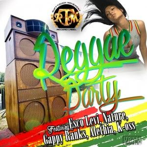"Mr. Bruckshut - ""Reggae Party Riddim (2016) Mix"""