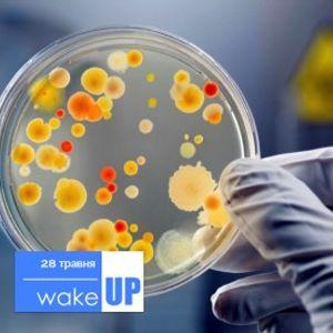 28.05.15 - Мікробіологія