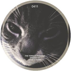 411. The Terrace :: Gato :: David Gtronic