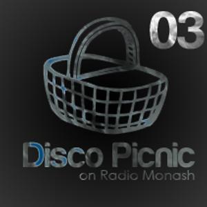 Disco Picnic 03