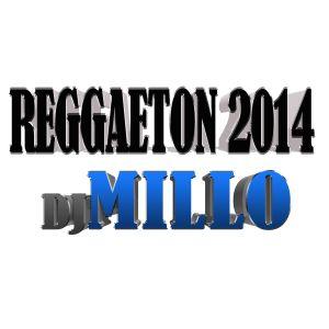 Reggaeton Summer Mix 2014 for your BBQ!!!