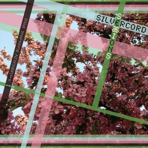 Silvercord 014 - Melodically blooming spins