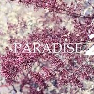 paradise 2 By Dj Alex in the miX
