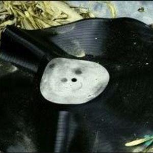Warped Vinyl #1
