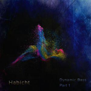 Habicht - Dynamic Bass, Part 1