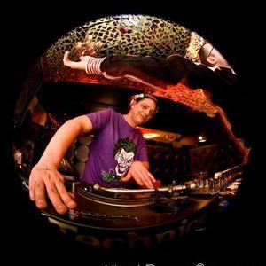 DJ DAN-E HOWES, zone vol 2