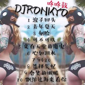 DJRonkyo -2K19 全中文咚咚鼓节奏舒服旋律 Vol23