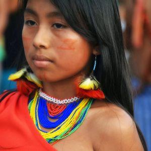 Mix for Ecuador -  Jungle, Andes & Tropical Coast - 2008