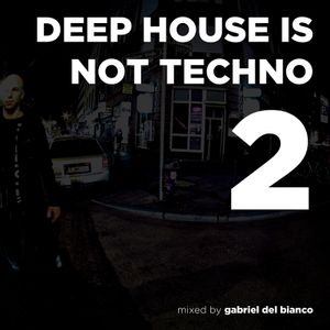 DEEP HOUSE IS NOT TECHNO 2