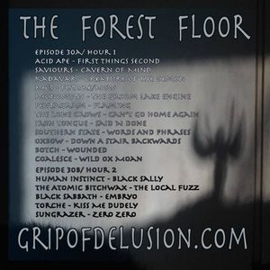 The Forest Floor Episode 30b