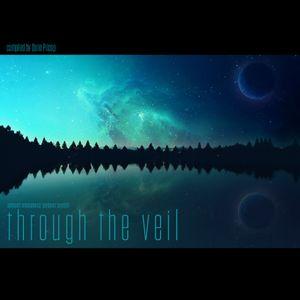 V.A. - Through The Veil