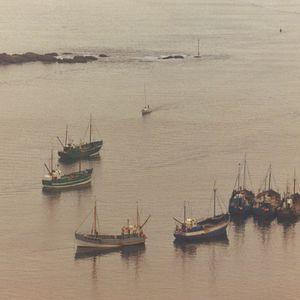 Estuary Tales 10: Artist