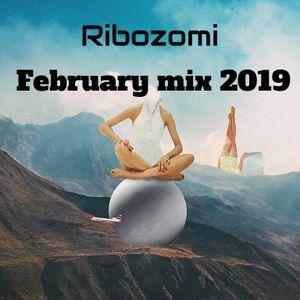 Ribozomi - February mix 2019