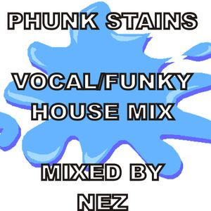 PHUNK STAINS / Vocal Funky House Mix
