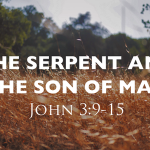 The Serpent and the Son of Man - Audio