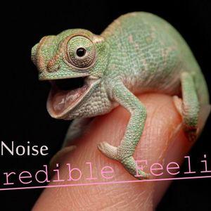 Silent Noise - Incredible Feelings